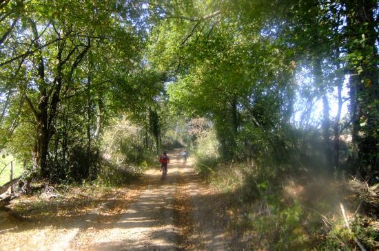 chemin Allonne